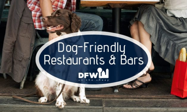 The Best Dog Friendly Bars and Restaurants in Dallas-Fort Worth