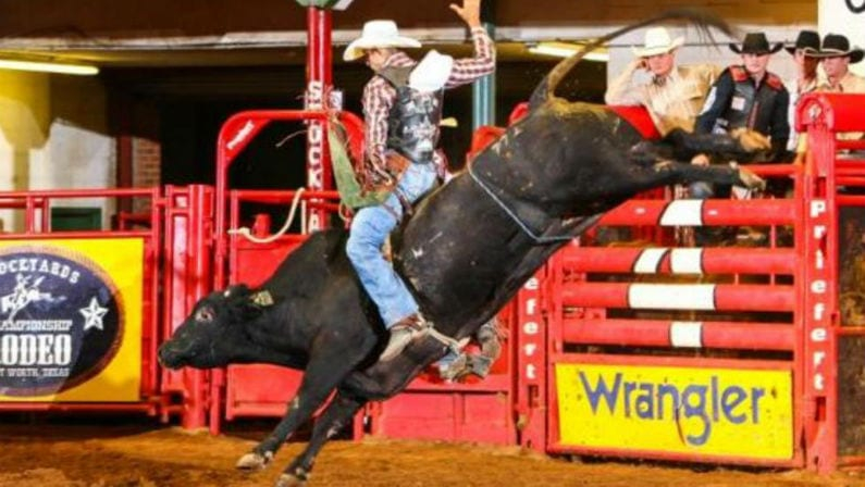 Fort Worth Stockyards Rodeo Coupons Tickets Schedule