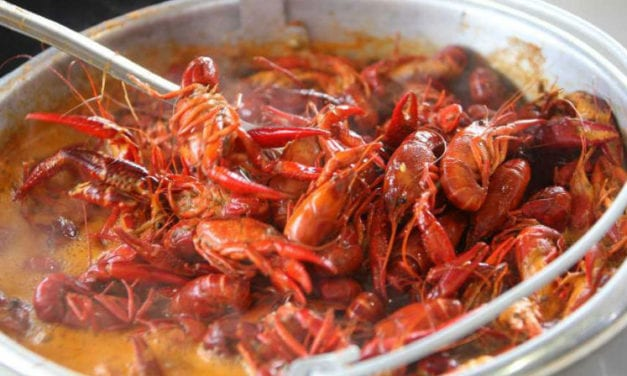 Don't Miss The Big Mamou Cajun Festival at Traders Village This Weekend