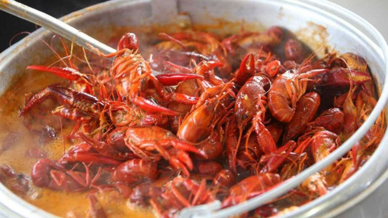 Enjoy the Best of the Bayou with the Big Mamou Cajun Festival at Traders Village