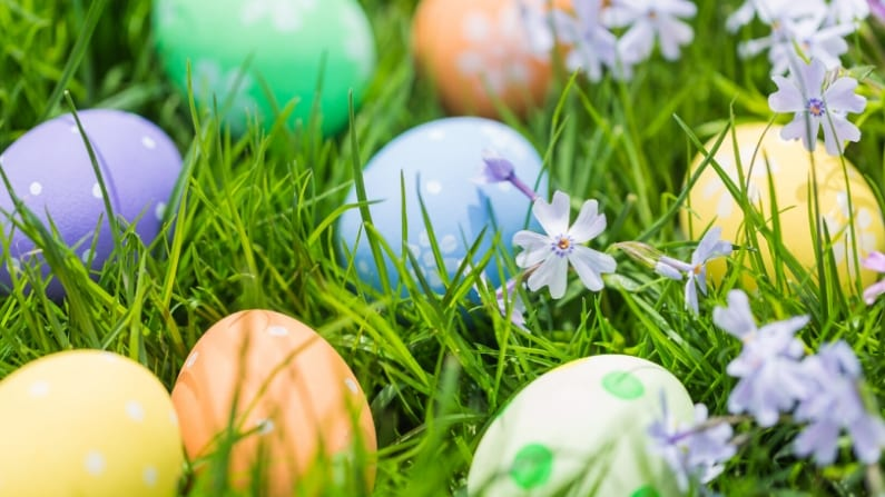 2021 Easter Egg Hunts in Dallas Fort Worth – Events For Kids, Toddler & Adults